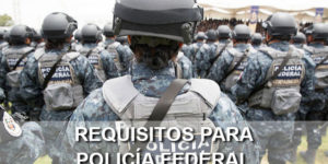 requisitos policia federal