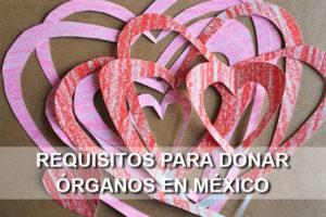 Requisitos para donar órganos en México
