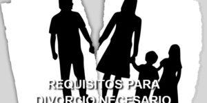 requisitos divorcio necesario
